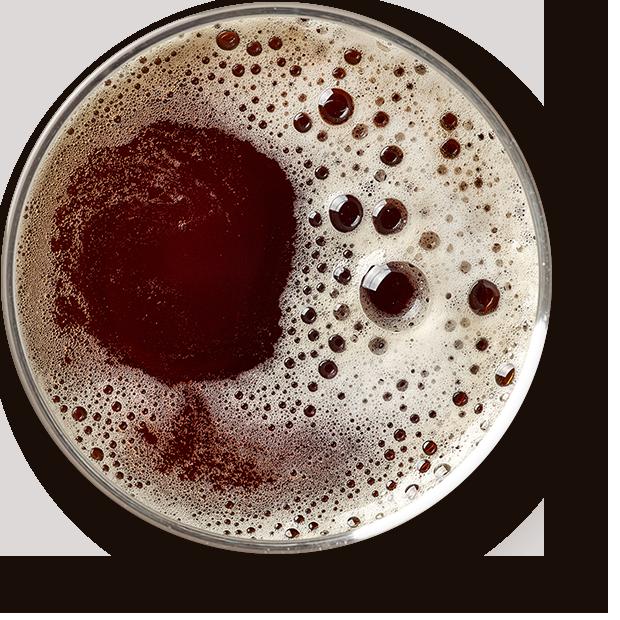 https://kingscornerpub.com/wp-content/uploads/2017/05/beer_transparent.png
